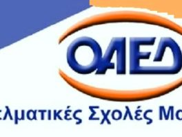 Αιτήσεις υποψηφιότητας για εισαγωγή στις ΕΠΑ.Σ. του ΟΑΕΔ από 18-6-2019 έως 30-8-2019