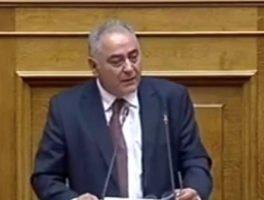 Ο πρόεδρος του ΕΕΑ στη Βουλή για τη λειτουργία των Επιμελητηρίων