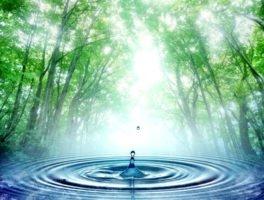 Η περιβαλλοντική διάσταση της διαχείρισης των δικτύων ύδρευσης